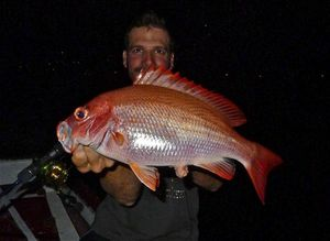 South Pacific Red Snapper — Nicolas Xmylife Rodmaps