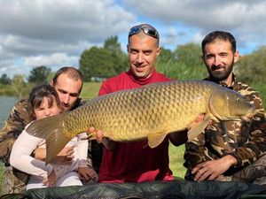 Common Carp — auberge du lac