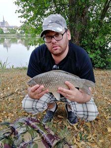 Common Carp — Jean-michel Chauve