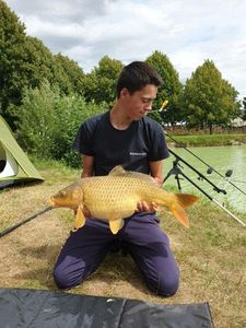 Common Carp — Romain Ponsardin