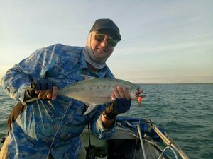 Talang Queenfish — Sebastien Pelletier
