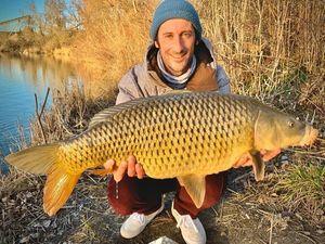 Common Carp — Matthieu Marchandise