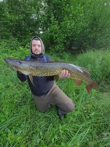 Northern Pike — Cedric Lmzr