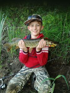 Northern Pike — Steve Pietrement