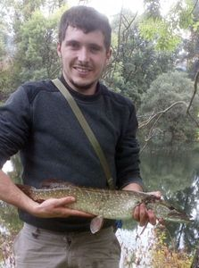 Northern Pike — Lucas Eucalyptus
