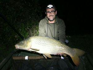 Common Carp — Jonathan Moncany