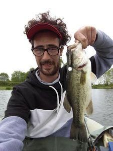 Largemouth Bass — Julien Double