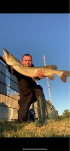 Northern Pike — Que du Dozo