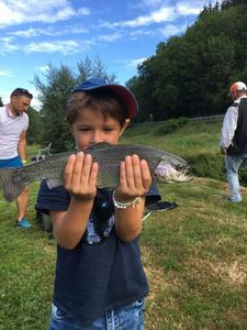 Rainbow Trout — Crack Fishing