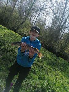 Amur Pike
