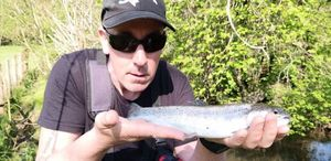 Rainbow Trout — Ben Chaumontel