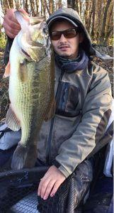 Largemouth Bass — Jeff Belghit