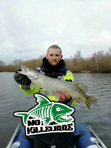 Northern Pike — Ptit-kal team no-killeurre carna