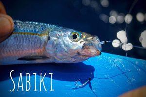 Bang — Sebcricri Fishing
