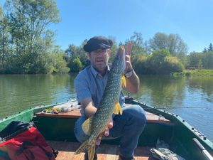 Northern Pike — Doudou Doudou