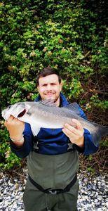 European Bass (Seabass) — Kevin Valer