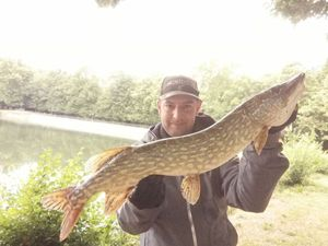 Northern Pike — Josselin De Oliveira