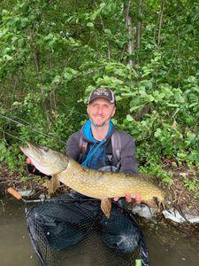 Northern Pike — Allan Jourquin