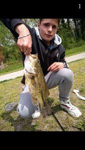 Largemouth Bass — Louis Martin