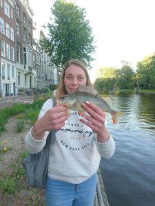 European Perch