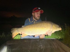 Common Carp — Florent Houel
