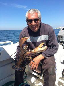 European Lobster — François BARBEAU