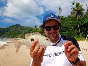 Moses Perch — Greg FishFriender
