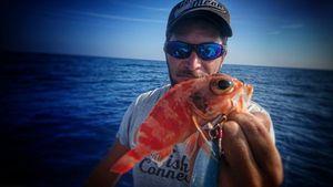Redfish — Nissa Djé