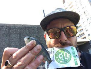 European Perch — Thom Hunt