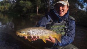 Brown Trout — Marius Andre