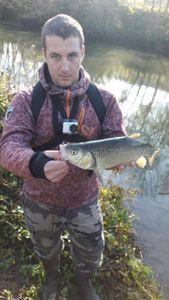 Chub — Nicolas flyfishing