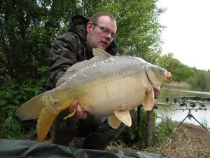 Mirror Carp — Sacha Geyer