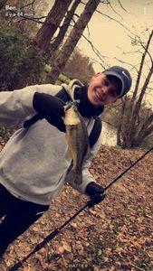Smallmouth Bass — Mathis mrt