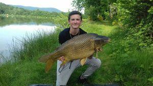 Common Carp — Florian Peltier