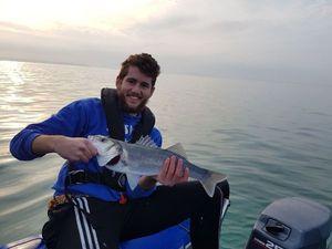 Bar Commun (Loup) — Abzhc Fishing