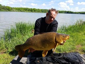 Common Carp — Sacha Geyer