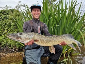 Northern Pike — Tanguy Serenari