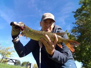 Northern Pike — Frederic Meignen