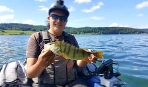 European Perch — Esoxgab Fishing