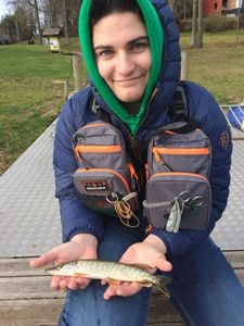 Northern Pike — Jules Demarly