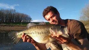 Black Bass (Achigan à Grande Bouche) — Jonathan Nouri