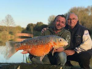 Koï Fish — Pascal Taunay