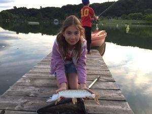Northern Pike — Fish & Fils