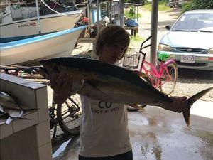 Yellowfin Tuna — Arthus Colas