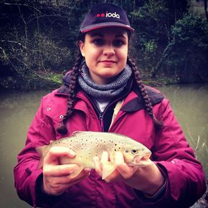 Brown Trout — Melody Nelson