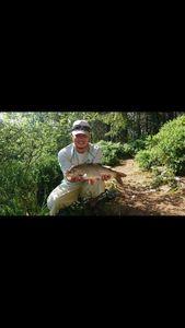 Rudd — Fishing Vortex