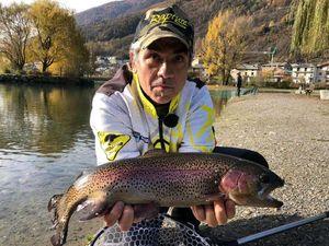 Rainbow Trout — Marco Iseppi