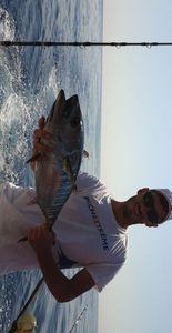 Bluefin Tuna — Julian Franza