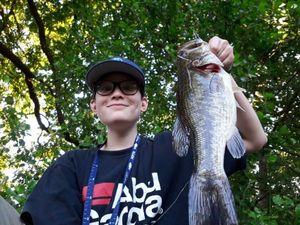 Black Bass (Achigan à Grande Bouche) — Yugo Fishing