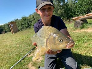 Crucian Carp — Fish tim